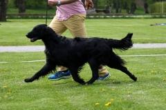 Mia x Bolt